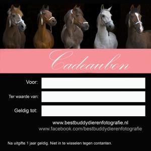 cadeaubon-achterkant-26-5-met-roze